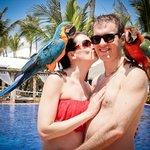 Parrots poolside!