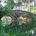 Rustic bridge at Stow Lake