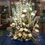 A bouquet of shells!