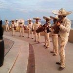 Lively Mariachis entertaining everyone at the Cinco de Mayo party. Fun, fun, fun!