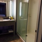 Shower in Studio Room (Rm 233)