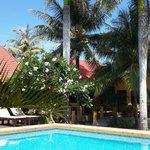 Resort swimming-pool