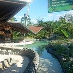 Arenal Springs Resort Thermal Pool