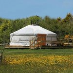 Your yurt and platform