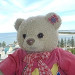 Kindy school bear joined us on holiday, he loved the view too!