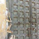 Old Door and Shark Jaws