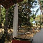 Vue sur le jardin depuis le bungalow n°1 (regular AC)