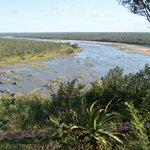 Vue sur la rivière depuis le bungalow FQ4V2
