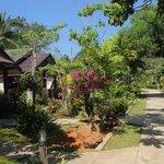 Les bungalows, dans le jardin