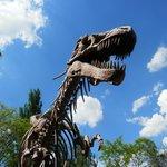 El cañon de los dinosaurios