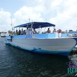 Moby Dick Tours' boat