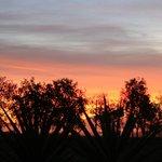 Blick aus dem Garten -Sonnenuntergang über Kapstadt