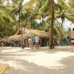 saona island(waiting for food)