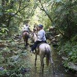 Horseback riding through Slate Creek, Belize