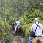 Riding through the Mt. Pine Ridge