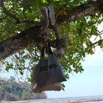 our bag holder :)