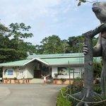 The Sloth Santuary