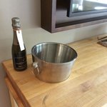 Champagne and bucket