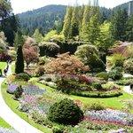 Classic View of the Sunken Gardens