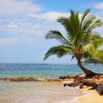 Foto de Punta Rica Beach & Jungle Villa
