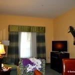 Living room in the 1 bedroom suite