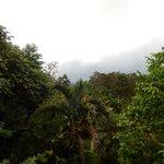 hiking to Bijagua Falls