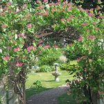 entrance to our peaceful gardens