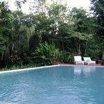 vista de la pileta con la selva Iriapu atras