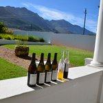 Wine Estate Maison