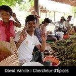 Producteur de Poivre de Kâmpôt - Sélection Cambodge 2014 by David Vanille et Épices - Guadeloupe