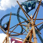 many different roller coasters to choose from