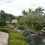 Beautiful gardens at the Marriott Resort