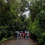 The main trail/road through the park