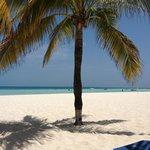 En la playa del Presidente