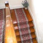 Wood floor/stairs