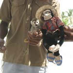 Mick meets the monkey!