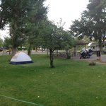 Tent camping at Century 2 Campground
