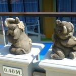 слоники у бассейна