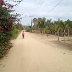 borrow a bike for a great ride to baja beans