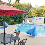 Upscale Pool Longe Guest Experience