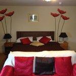 Lovely Room 6