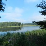 One of the side lakes you can find by taking some of the awesome trails.