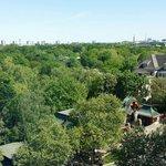 Blick auf den Zoo gegenüber