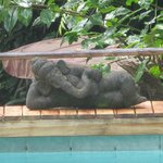 Ganesha by the pool