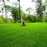 rumput hijau dan buku, kombinasi paling manis