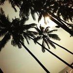 Chandi Boutique Beach Resort