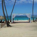 Weddings on the beach anyone?