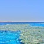 Diving e snorkling a Marsa Mubarak vicino Port Ghalib