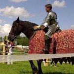Medieval Festival  - Jousting!