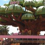 l'arbre magique du sésamo